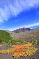 静岡県 富士山 宝永第三火口底より見る第一火口
