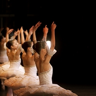 ステージで1列に並び踊るバレリーナ