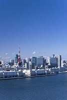 東京都 港区 芝浦方面を望む