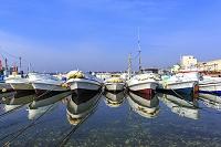 茨城県 大洗漁港