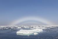 ノルウェー スヴァールバル諸島 流氷