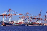 横浜港 本牧埠頭のコンテナ船