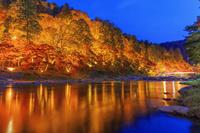 愛知県 紅葉の香嵐渓ライトアップ