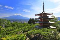 山梨県 新倉山浅間公園 新緑の忠霊塔と残雪の富士山