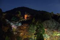 京都府 清水寺 子安塔