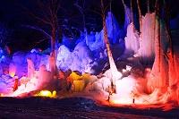 岐阜県 氷点下の森