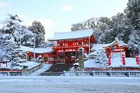 京都府 八坂神社 雪景色の西楼門