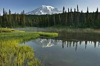 アメリカ合衆国 レーニア山国立公園