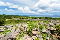 沖縄県 今帰仁城と東シナ海