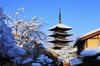 京都府 雪景色の八坂の塔と青空