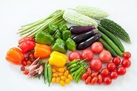 野菜 夏野菜集合