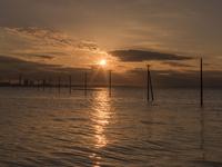 千葉県 電柱と海