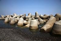 静岡県 テトラポット(消波ブロック)