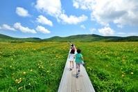 初夏の草原をかける日本人の子供たち