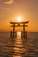 滋賀県 白鬚神社の鳥居と朝日