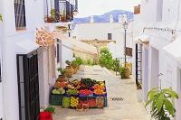 スペイン コスタ・デル・ソル フリヒリアナ