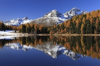 スイス カラマツの紅葉が投影する湖水