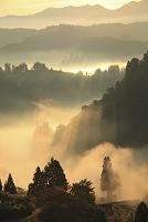 新潟県 棚田と朝もや