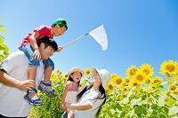ひまわり畑で遊ぶ家族