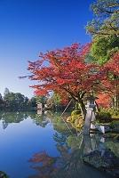 石川県 紅葉の兼六園 ことじ灯籠