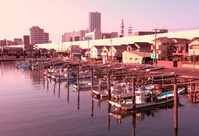 千葉県 船橋漁港 船溜まり 日暮れ