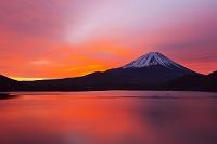 山梨県 富士河口湖町 本栖湖 富士山