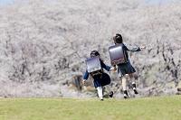 桜の咲く公園を走る新一年生後ろ姿