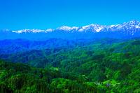 長野県 鬼無里 初夏の大望峠からアルプス展望