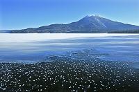 北海道 フロストフラワー(霜の花)の阿寒湖と雄阿寒岳