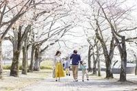 花見をする日本人家族