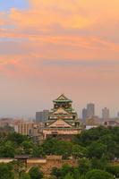 大阪府 大阪城公園と市街地の街並みと夕暮れ空