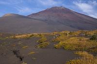 富士山 御殿場口登山道