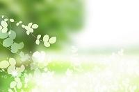 草花の背景素材