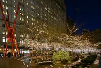 ニューヨーク ズコッティパークのイルミネーション クリスマス