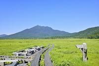 群馬県 中田代の牛首三叉路から望む燧ヶ岳