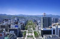 北海道 札幌市 テレビ塔より望む大通公園