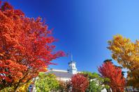 長野県 松本市 紅葉の旧開智学校