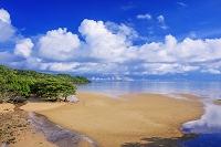 沖縄県 西ゲーダ川河口とマングローブ林 西表島