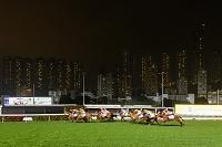 競馬のナイトレース