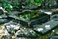 東京都 三鷹市 井の頭恩賜公園 お茶の水