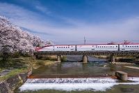 秋田県 桜と秋田新幹線