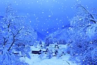 富山県 五箇山 雪降る相倉の合掌造り集落