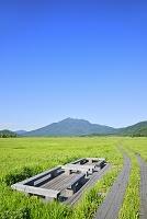 群馬県 中田代から望む燧ヶ岳と木道