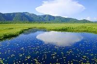 群馬県 中田代の池塘に浮かぶ雲