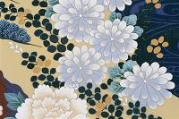 着物の模様 菊