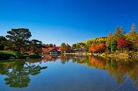 東京都 昭和記念公園 日本庭園