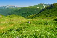 富山県 三俣蓮華岳から薬師岳左奥遠望