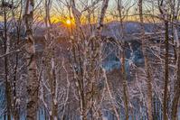 長野県 厳冬の聖高原の霧氷