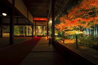 京都府 宝泉院 客殿から見るライトアップされた紅葉の額縁庭園