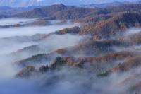 長野県 大望峠の雲海